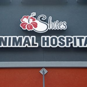 Shores_Animal_Hospital_03